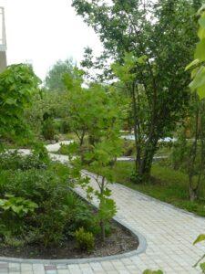 С чего начинается дизайн сада