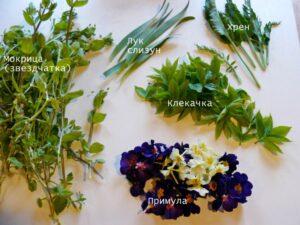 Съедобные цветки и листья. Что дает реальный урожай?